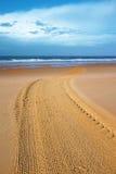 Limpie la playa Imagen de archivo