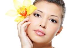 Limpie la tez de una cara femenina asiática de la belleza Foto de archivo libre de regalías