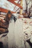 Limpie las corrientes abajo de una corriente hermosa La fotografía fue tomada en un Silver Spring, cerca del pueblo de Kurma, en  Imágenes de archivo libres de regalías
