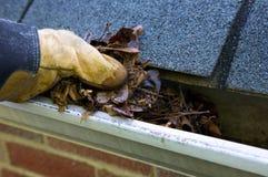 Limpieza de la caída - hojas en canal Imagen de archivo