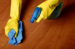 Limpieza de la casa Imagen de archivo libre de regalías
