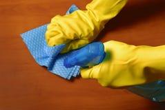 Limpieza de la casa Fotografía de archivo libre de regalías