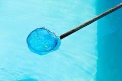 Limpieza de la piscina al aire libre por la desnatadora neta de la hoja Fotografía de archivo