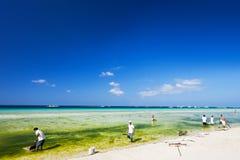 Limpieza de la playa Foto de archivo libre de regalías