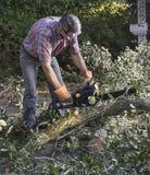 Limpieza de la yarda después de una tormenta imagen de archivo