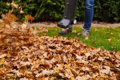 Limpieza de las hojas con un ventilador Trabajo del oto?o en el jard?n fotografía de archivo libre de regalías