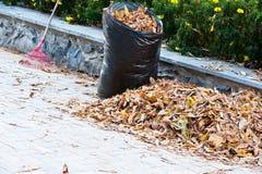 Limpieza de las hojas de otoño imagen de archivo