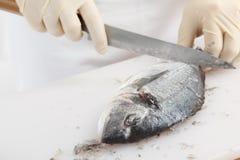 Limpieza de los pescados Imágenes de archivo libres de regalías