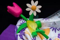Limpieza de primavera Foto de archivo libre de regalías