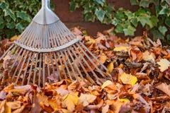 Limpieza del jardín foto de archivo libre de regalías