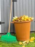 Limpieza del jardín del otoño Foto de archivo libre de regalías