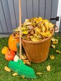 Limpieza del jardín del otoño Fotos de archivo