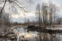 Limpieza del río de Malashka Foto de archivo libre de regalías