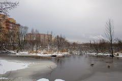 Limpieza del río de Malashka Imagen de archivo libre de regalías