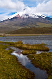 Limpiopungo Lagoon at the foot of Cotopaxi Royalty Free Stock Photo