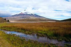 Limpiopungo lagun på foten av vulkan Cotopaxi Arkivbild