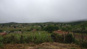 Limpopo South Africa. Fog in the horizon in south africa Royalty Free Stock Photography