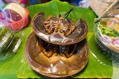 Limulo di freschezza da vendere sul Marke fresco thailand immagine stock