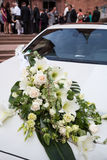 Wedding 1 imagens de stock royalty free