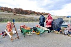 LIN, ALBANIË 9,2017 DECEMBER: De boerlandbouwers verkopen ui op de stoep van weg aan de stad van Pogradec in Albanië Stock Afbeelding