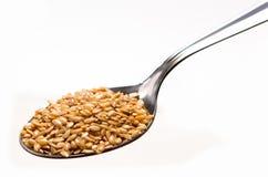 Lin oléagineux d'or dans le scoop Image stock