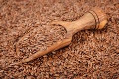 Lin seeds Stock Image