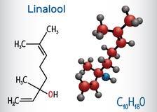Linalool molecule Structureel chemisch formule en moleculemodel stock illustratie
