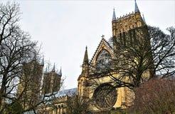 Lincoln Cathedral, uit de het Paleistuinen die van de Bischop wordt genomen stock afbeeldingen