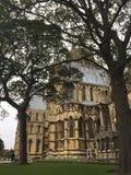 Lincoln Cathedral visto a través de los árboles en la yarda de la iglesia de monasterio imagen de archivo