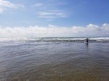Lincoln City Oregon Beach Sun stock fotografie
