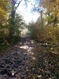 Lincoln Memorial Gardens. Fall in Illinois stock photo