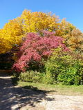 Lincoln Memorial Gardens. Fall in Illinois royalty free stock images