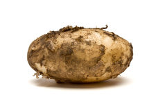 Lincoln new Potatoes Stock Images