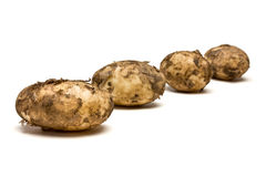Lincoln new Potatoes Stock Photos