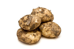 Lincoln new Potatoes Royalty Free Stock Photography