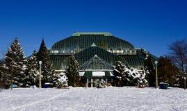 Lincoln Park Conservatory im Schnee stockbilder