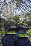Lincoln Park Conservatory inside Royalty Free Stock Images