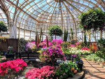 Lincoln Park Conservatory royalty free stock image