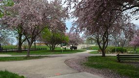 Lincoln Park Entrance Arkivfoton