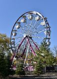 Lincoln Park Ferris Wheel. This is a Fall picture of the Ferris Wheel located at the Lincoln Park Zoo located in Chicago, Illinois.  The Ferris Wheel is part of Royalty Free Stock Image