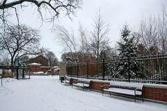 Lincoln Park with snow at winter. In Chicago, Illinois Royalty Free Stock Photo