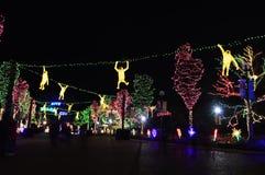 Lincoln Park Zoo Lights Royaltyfria Bilder
