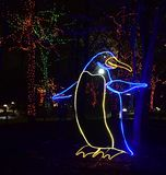 Lincoln Park Zoo Zoolights #6. This is a Winter picture of a holiday exhibit at the iconic Lincoln Park Zoo Zoolights located in Chicago, Illinois in Cook County royalty free stock photography