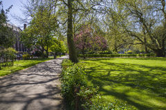 Lincoln's Inn Fields. A view of the grassed area at Lincoln's Inn Fields - the largest public square in London royalty free stock photography