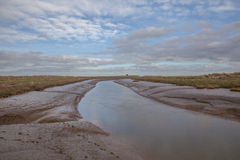Lincolnshire Salt Marsh Royalty Free Stock Image