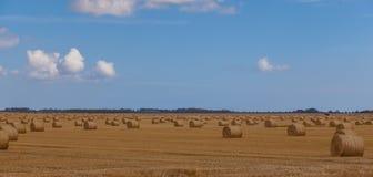Linconshire hay bales Stock Photo