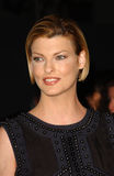 Linda Evangelista royalty free stock photography