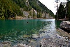 Lindeman sjö, Chilliwack Kanada F. KR. fotografering för bildbyråer