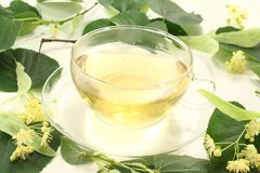 Linden blossom tea Royalty Free Stock Image