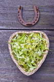 Linden blossoms in heart shaped basket with a horseshoe Stock Photography